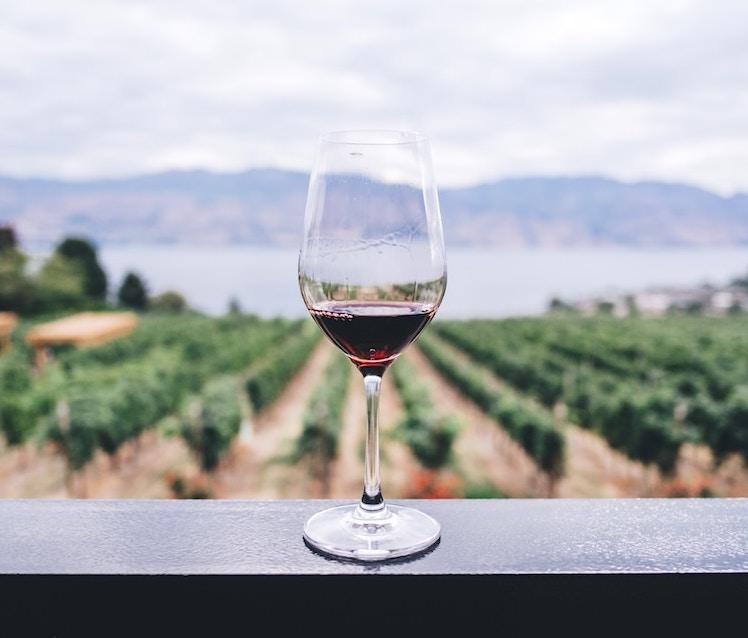 Kajetia: la región de la uva
